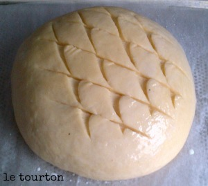 tourton 2